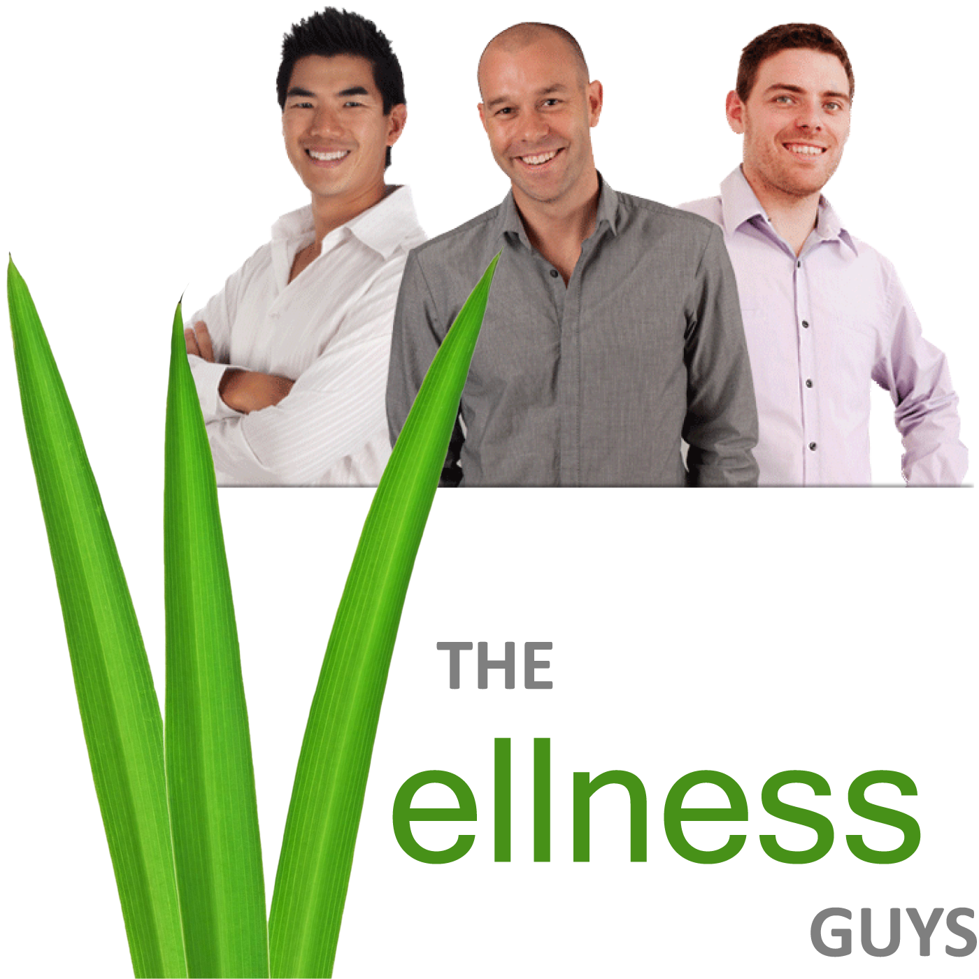 The Wellness Guys Show