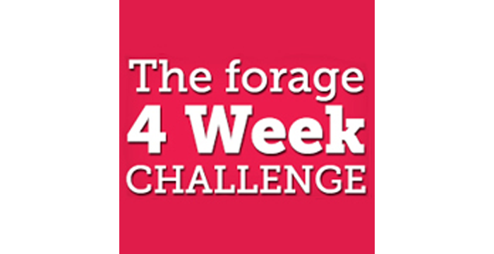 WAY 56: The Forage Challenge – with Damian Kristof