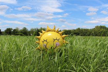 TWIW 67: Can vitamin D prevent allergies?