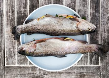 TWIW 114: Swap seed oils for fish oils for a 30-40% migraine reduction
